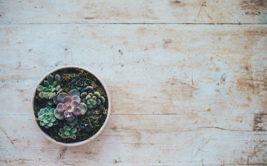 Healing From Birth Trauma